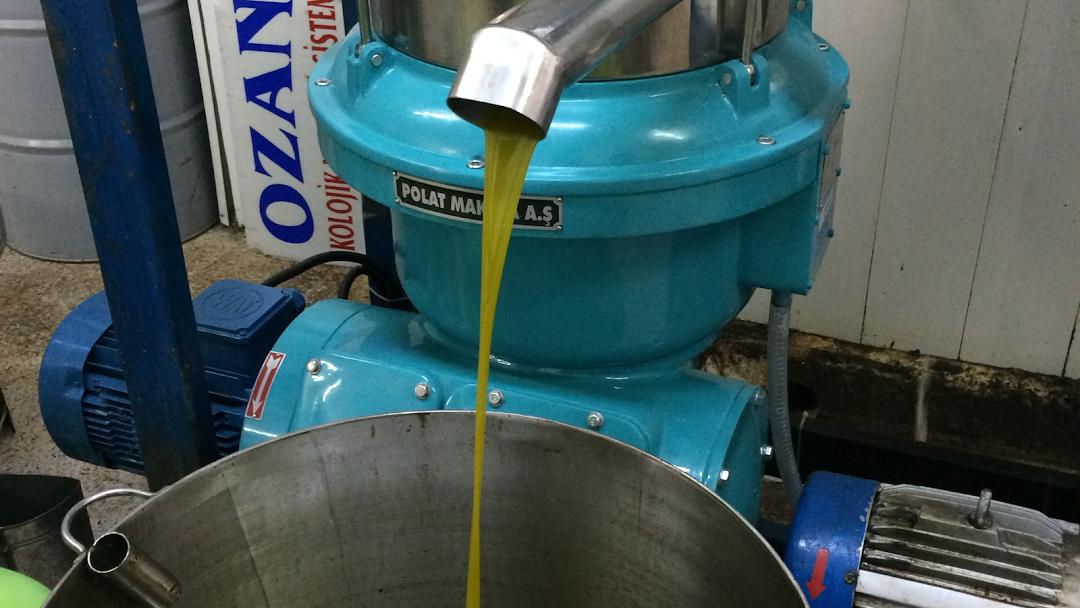 kontinu sistem zeytin yağı fabrikası